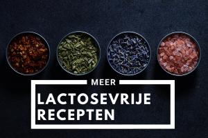 lactosevrije recepten